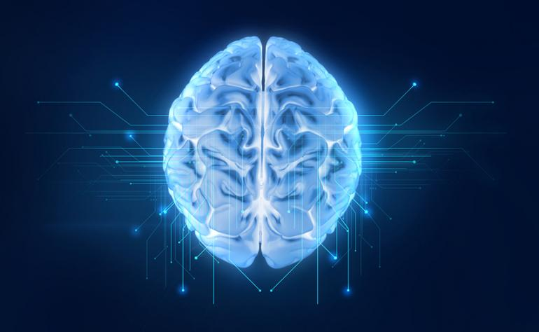 1. Beynimiz ne kadar büyük