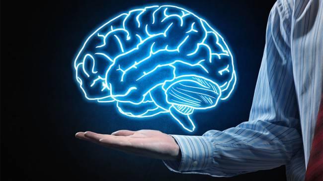 2. Beyin ne yapar