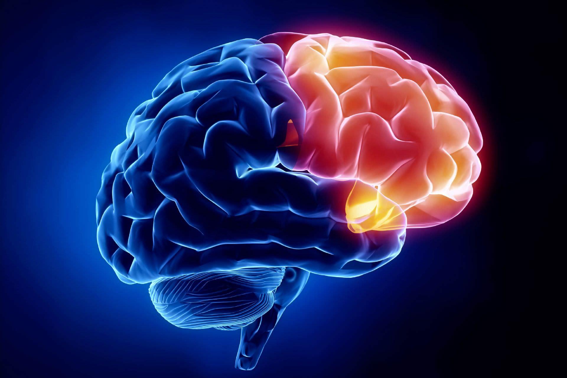 3. Aç beynimiz Olursa Ne Olur