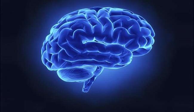 Beyniniz Hakkında Bilmediğiniz Yedi (Veya Daha Fazla) Şey 2018