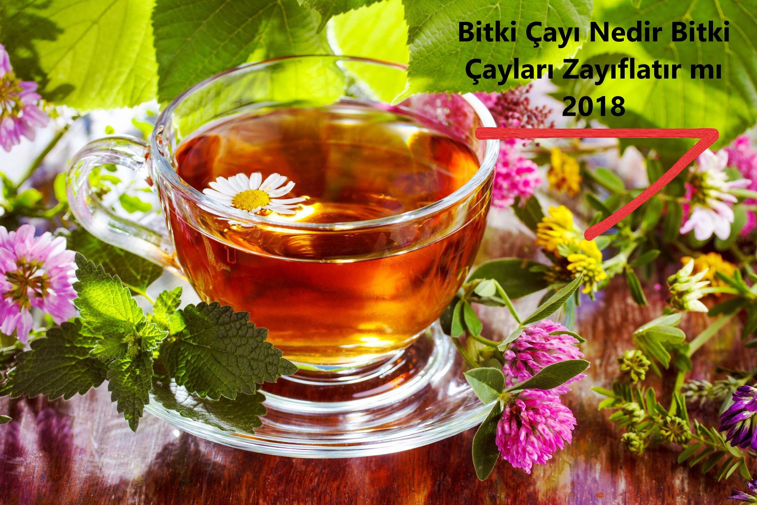 Bitki Çayı Nedir Bitki Çayları Zayıflatır mı 2018