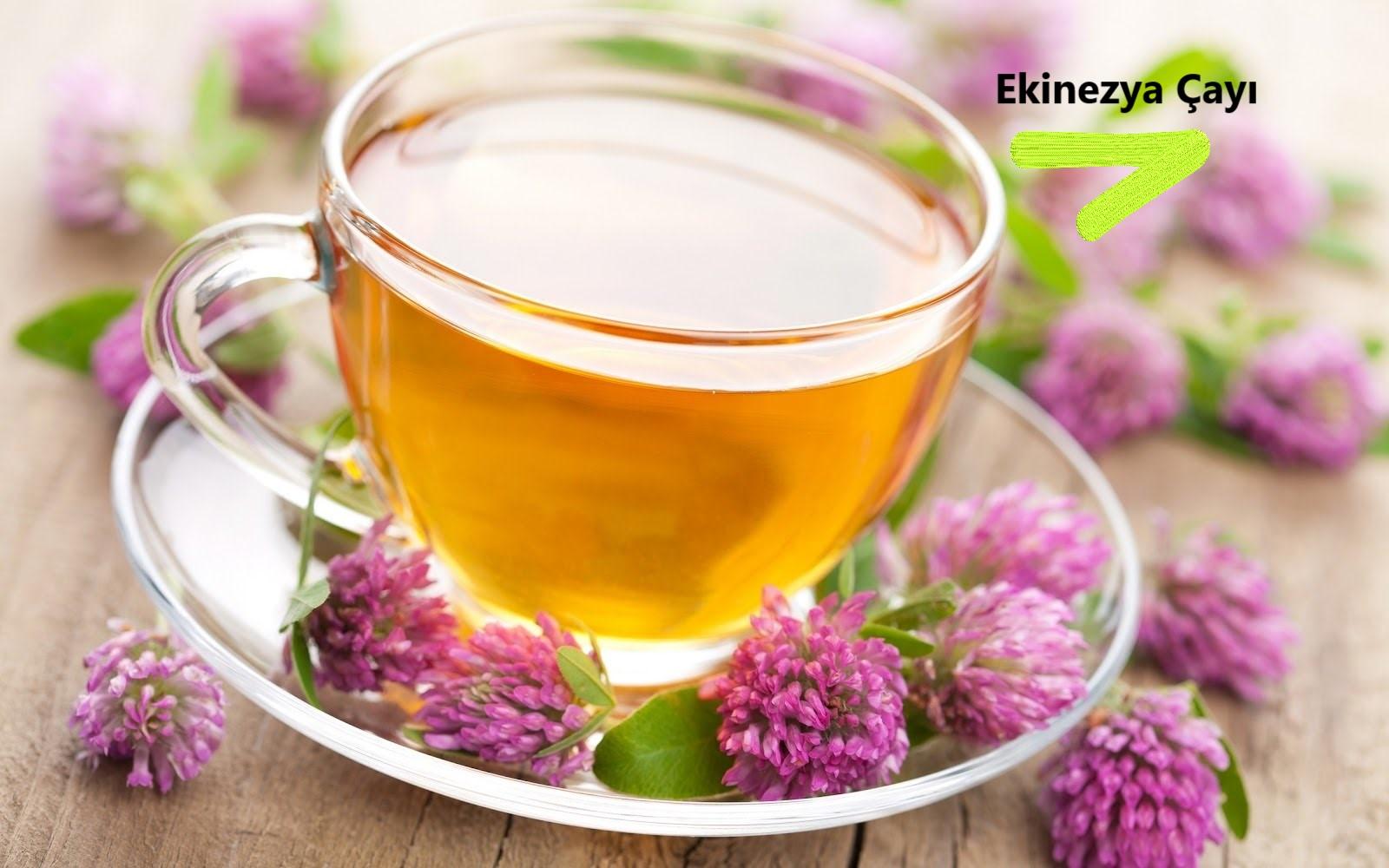 Ekinezya Çay