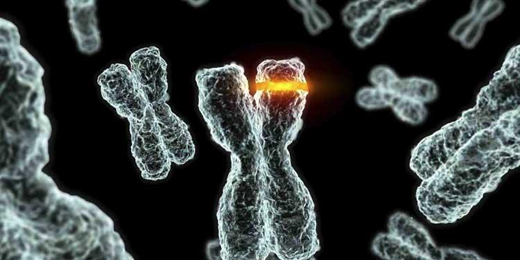 Genetik Mutasyonlar İçin Test Edilmeli miyim