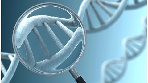 Genetik Test Sırasında Ne Olur