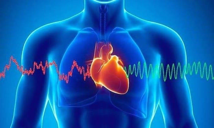 Kalp Pili Nedir Kalp Pili Tanımı ve Gerçekleri 2018