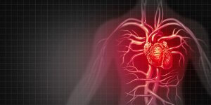 kalp krizi nedenleri
